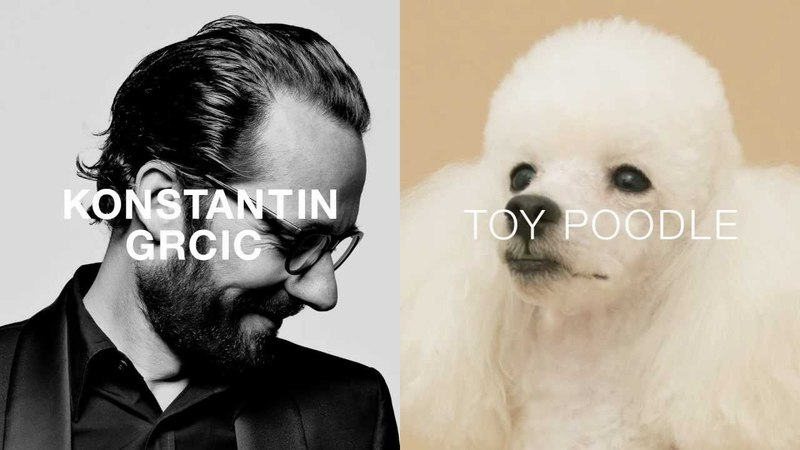 PARAMOUNT by KONSTANTIN GRCIC for TOY POODLE