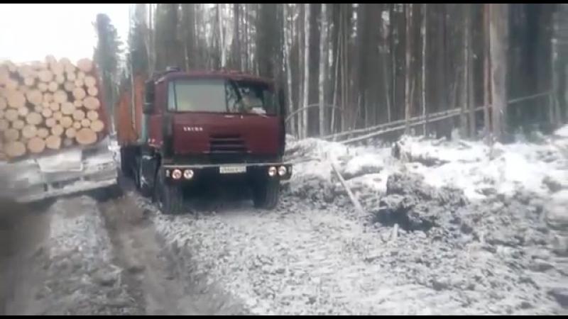 Tatra 815 Татра ЯМЗ 238 в лесу