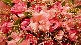 Розовые Розы. Ты моя любимая сказка!