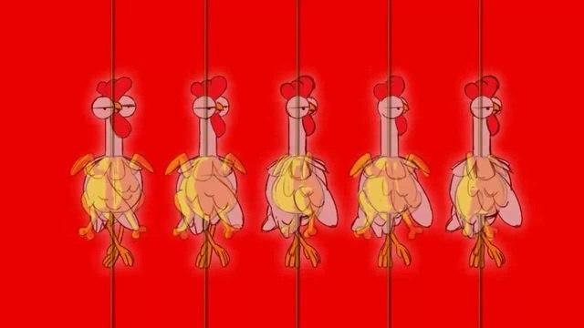 Chicken's hell · coub, коуб