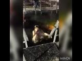 купание в проруби на Крещение. 19.01.2018 год