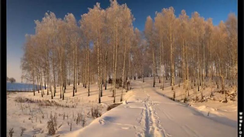 Стелла Джанни - Сердце на снегу