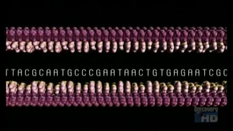 100 Величайших Открытий - Генетика (Фильм от ASHPIDYTU в 2004)