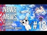 News Mews #18. КотоАнимэ