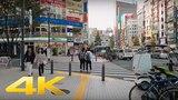 Walking around Shinjuku east area - Long Take