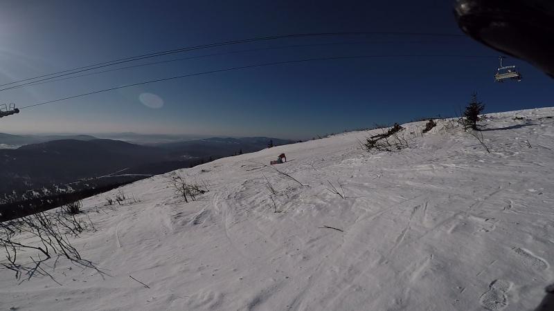 миграция личинки сноубордиста