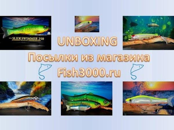 Огромный DEPS, DaiwaGan Craft их совместный труд и др. - UNBOXING fish3000