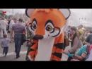 Памятный День День тигра в Приморском крае 2017 год