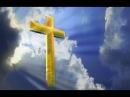 Рабочие распилили бревно и ахнули Объяснения этому нет до сих пор Загадка Иерусалимских крестов