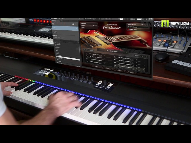 NI SESSION GUITARIST – ELECTRIC SUNBURST demo by muzykuj.com