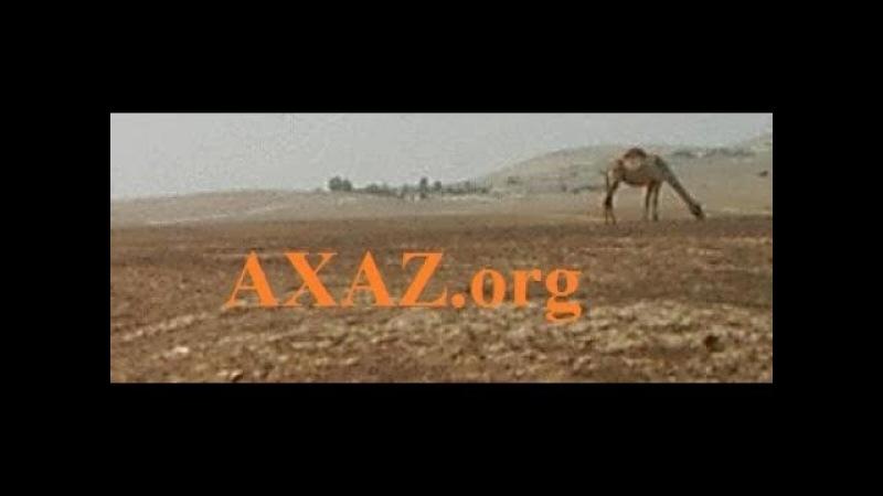 537. Заголовки новостей на иврите от 18 хешвана 5778 года