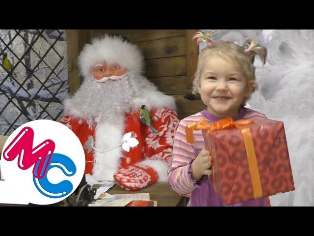 БИЗОН подарил ДЕТЯМ праздник МАША и САША на новогодней елке ПОДАРКИ от Деда Мороза