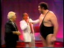 Brother Love Show with Andre the Giant and Ultimate Warrior (07-29-1989)