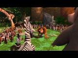 Madagascar 1 - Alex &amp Marty's NatGeo