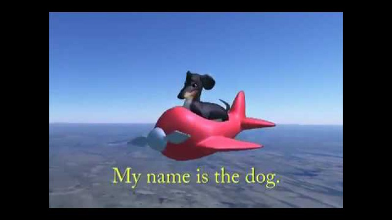 The Dog in The Airplane dank meme
