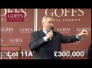 Samcro sells for £335,000 at Goffs UK Aintree Sale