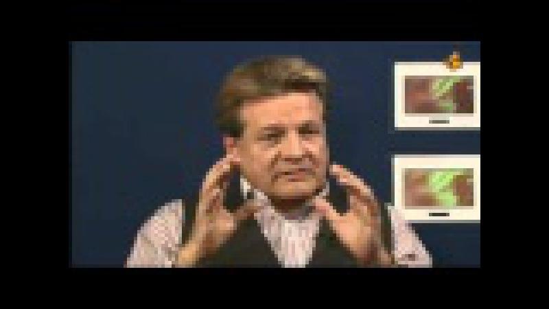 Prof Dr Michael Vogt Diffamierungen