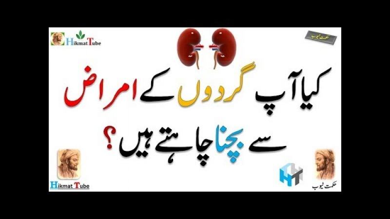 Protein for kidney health / protein for kidney / kidney / kidney disease / kidney treatment