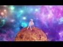 Dancing dog - Shooting stars
