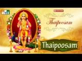 Lord Murugan Tamil Songs - Thaipoosam - Bhakthi