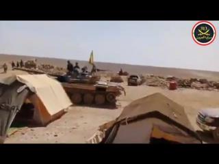 Иракские добровольцы на окраине города Аш-Шула, в провинции Дейр-эз-Зор