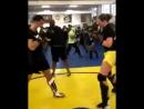 Гегард Мусаси готовится к возвращению в клетку Bellator