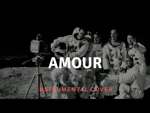 Rammstein - Amour Instrumental Cover (Live Version)