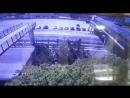 В Геленджике парень упал с моста