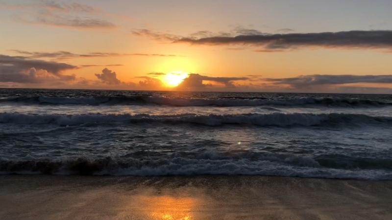 Побережье Тихого океана — USA 2018