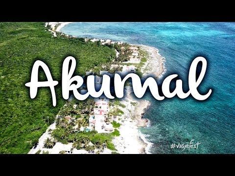 Akumal, qué hacer y cómo nadar con las tortugas