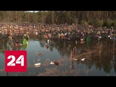 Под Вологдой паводковые воды затопили кладбище, дезинфекция невозможна - Россия 24