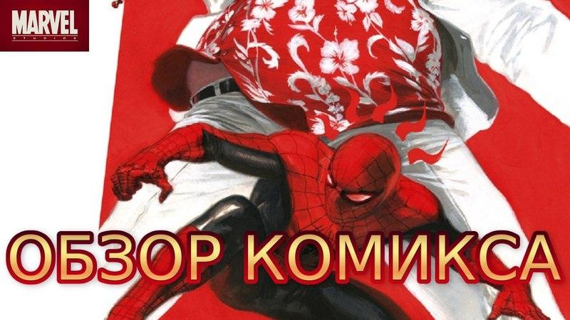 Обзор комикса Удивительный Человек-Паук: Дела семейные