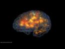 Визуализация мозговой активности. Думайте-это так красиво!