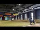 Воронина Кристина лошадь Прада Предварительный приз Юноши
