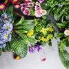 Тонна с сотки: Богатый Урожай, Цветущая Дача