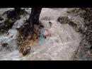 экосистема чистыйКрым коррупция ливнёвкаа Крым Ялта Crimea ecosystem corruption cleanCrimea
