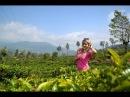 Приехали в Нувара Эллию, чайные плантации. Остановились в отеле Tea bush hotel Ramboda