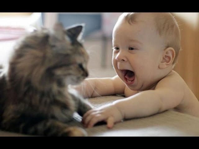 Kedilerle Bebeklerin en KOMİK halleri.👶😹 ÇOK Güleceksiniz