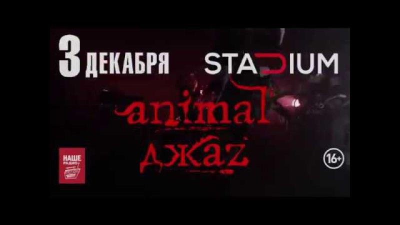 Animal ДжаZ - 10 лет альбому ШАГ ВДОХ, 3 декабря, Stadium