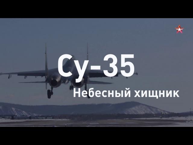 Небесный хищник новейший истребитель ВКС Су 35 за 60 секунд