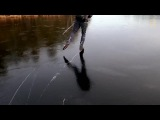 Wild ice skating is done on black ice, which can be as thin as two inches (... · #coub, #коуб