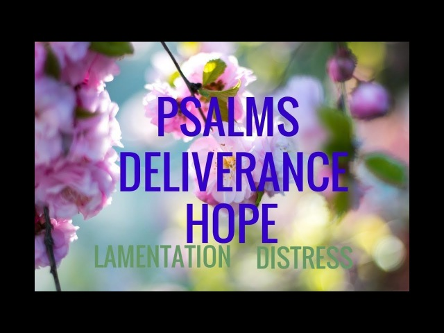 Psalms for Deliverance from Distress. Hope and Lamentation. Soaking in Bible Verses. Relaxing!