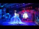 Цирковое водное шоу Пираты подземного моря в бассейне СК Олимпийский