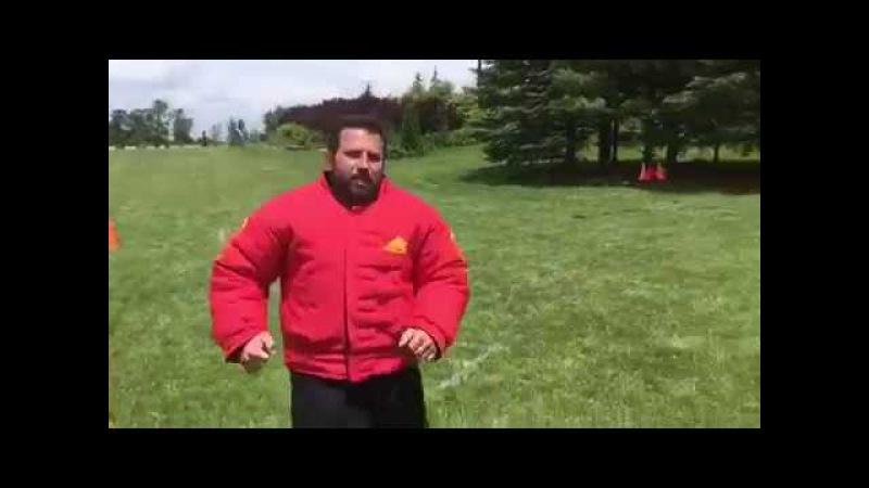 Тест-драйв полупостановочного рингового костюма «Ring Sport dog» PBS6R от ForDogTrainers