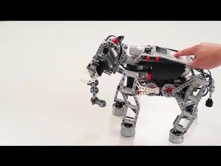 Робот своими руками? Легко! LEGO® MINDSTORMS® Education