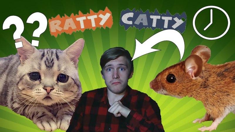 НУ ПОЧЕМУ КОТ ТАКОЙ ЗЛОЙ Ratty Catty