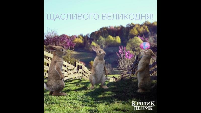 Щасливого Великодня_Кролик Петрик