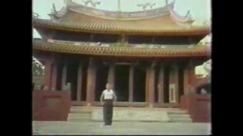 Northern Praying Mantis KungFu Methods