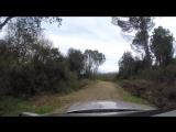прогулки на Лёхе по перинейским лесам