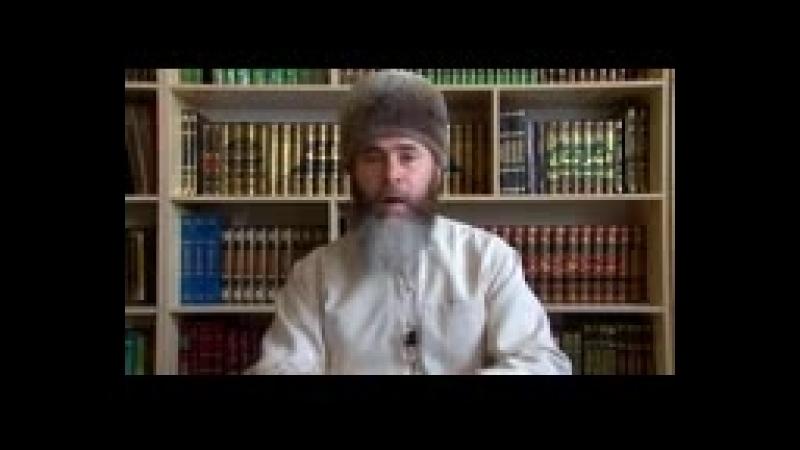 Полностью разложил ложь ваххабита Чумакова│Шейх Салахь Межиев На русском 144 X 176 3gp